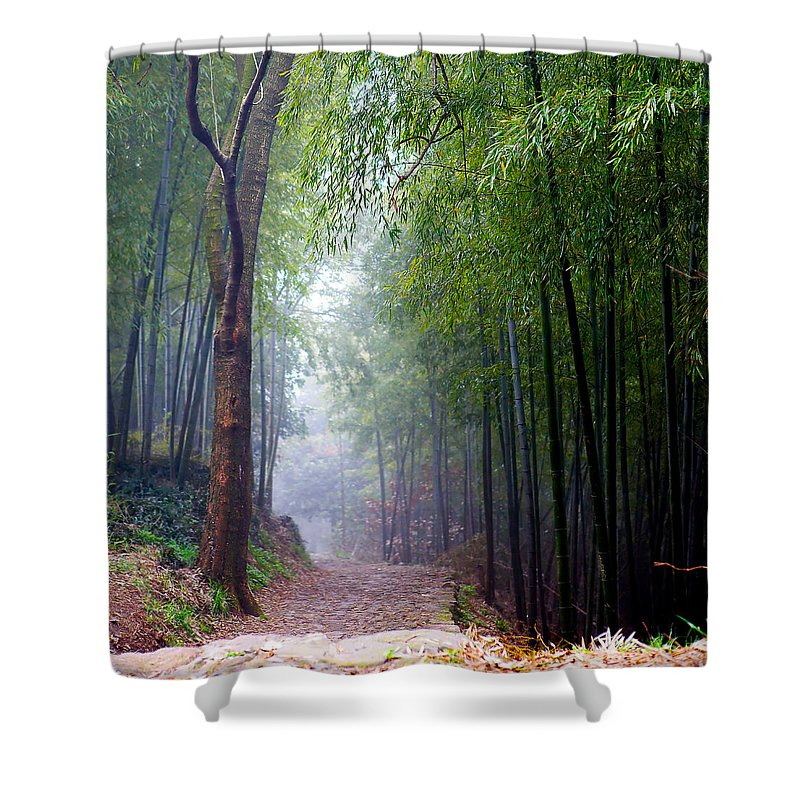 Trees Shower Curtain featuring the photograph Mountain Trail by James O Thompson