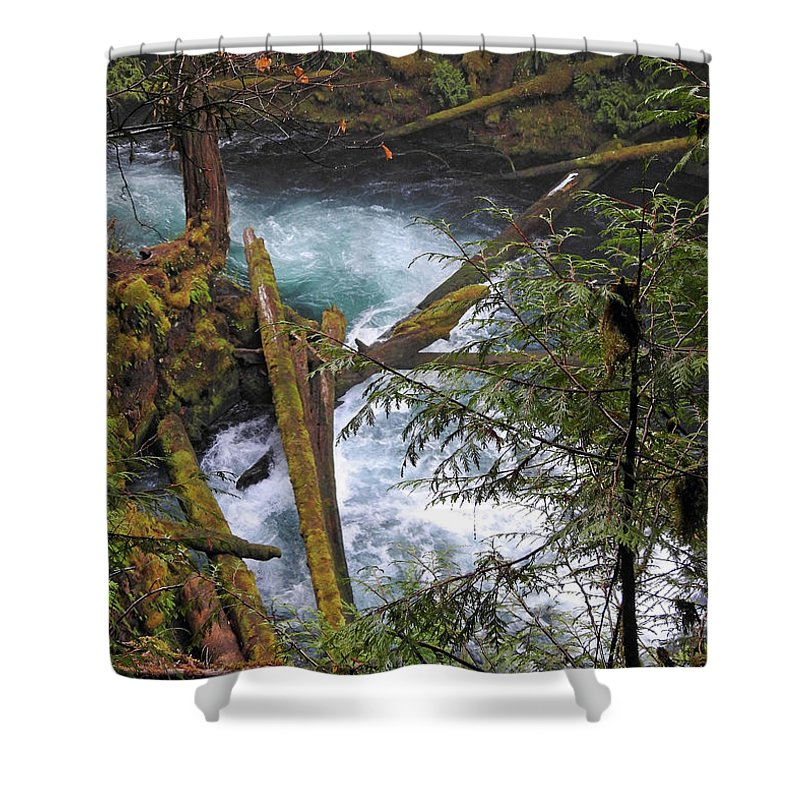 Stream Shower Curtain featuring the photograph Oregon Stream by Lindy Pollard