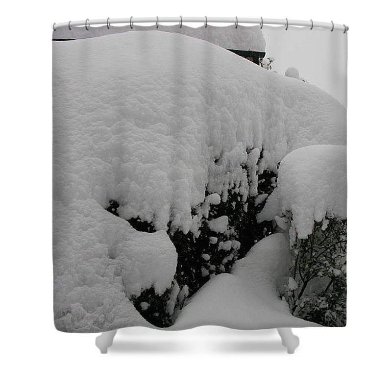 Snow Shower Curtain featuring the photograph Overnight Snow by Maria Joy