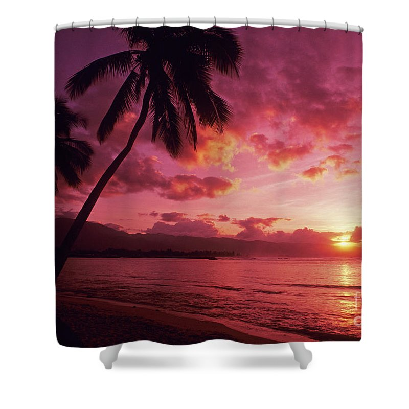 Beach Shower Curtain featuring the photograph Palms Against Pink Sunset by Carl Shaneff - Printscapes