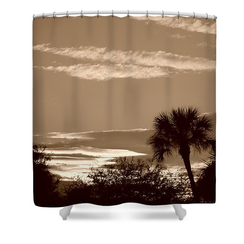 Sepia Shower Curtain featuring the photograph Palms In The Clouds by Rob Hans