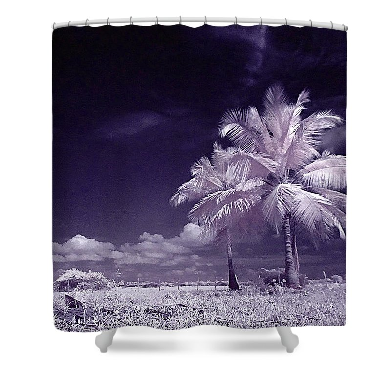 Infrared Shower Curtain featuring the photograph Palms by Galeria Trompiz