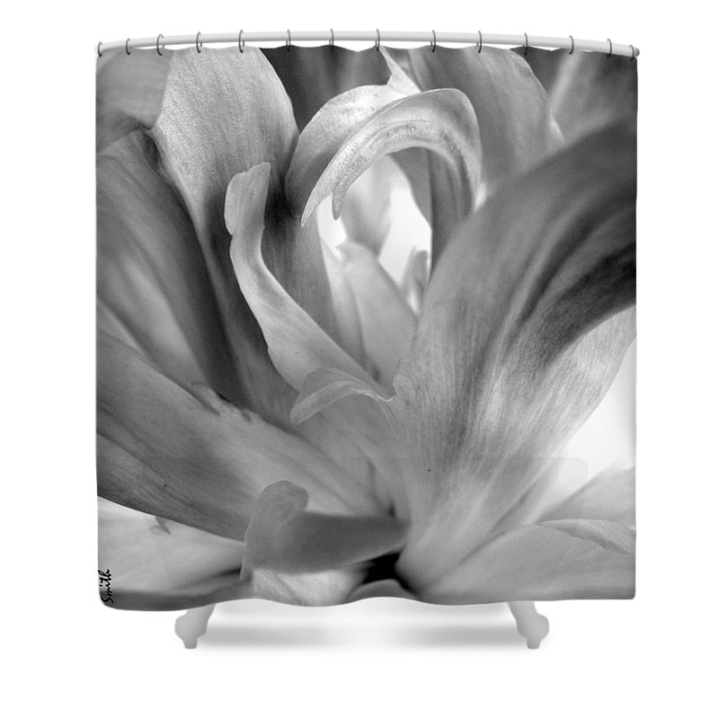 Peace Shower Curtain featuring the photograph Peace by Ed Smith