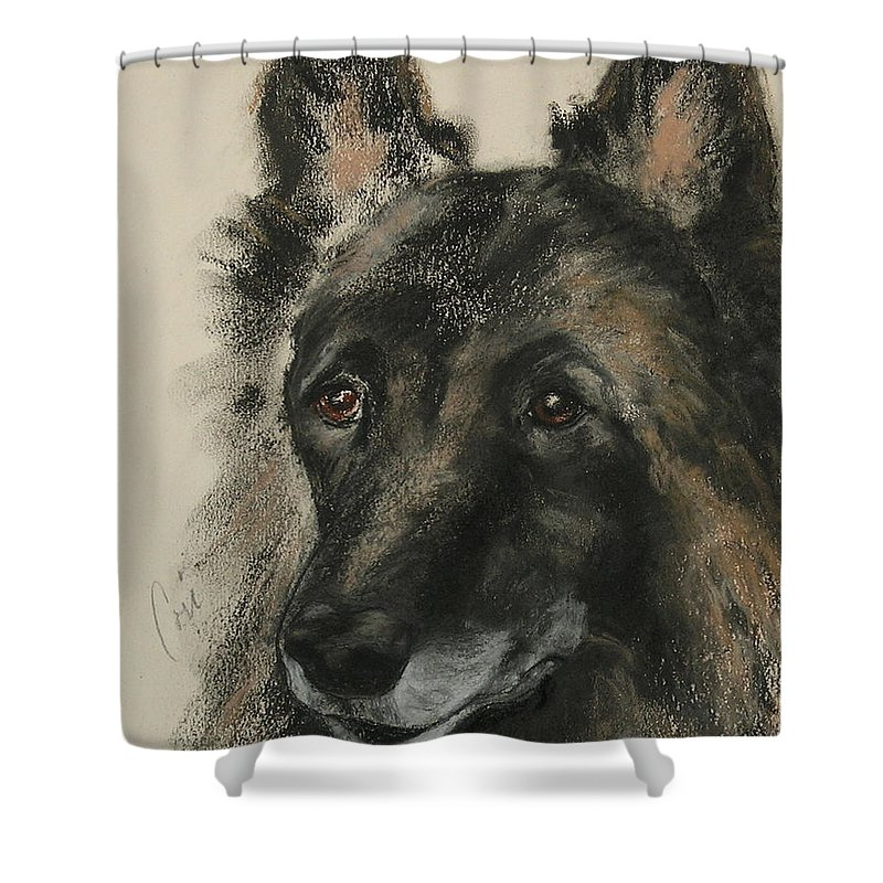 Pastel Shower Curtain featuring the mixed media Peaked Interest by Cori Solomon