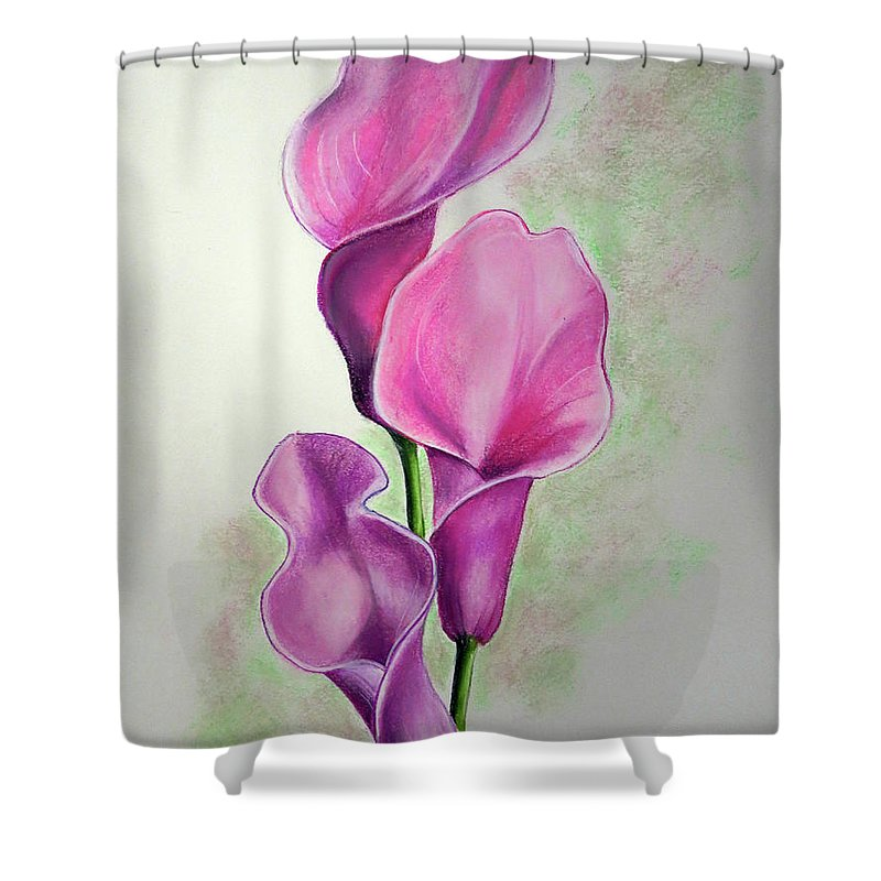 Pink Flower Shower Curtain featuring the drawing Pink Callas by Karin Dawn Kelshall- Best