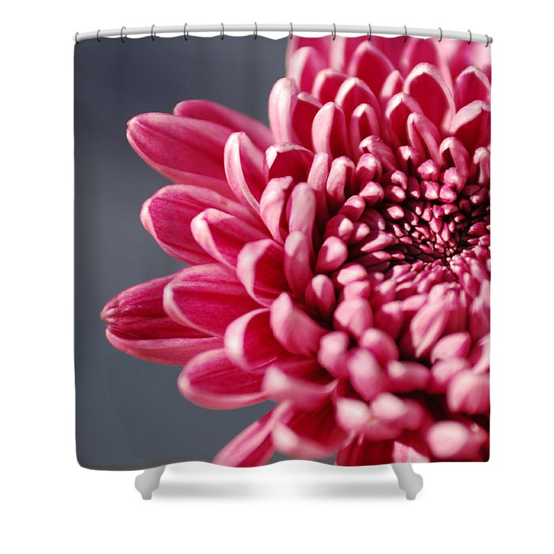 Flower Shower Curtain featuring the photograph Pink Flower by Jill Reger