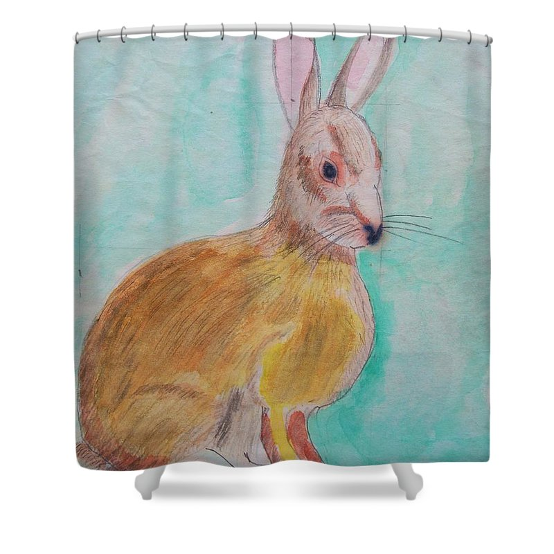 Rabbit Shower Curtain featuring the painting Rabbit Illustration by Eric Schiabor
