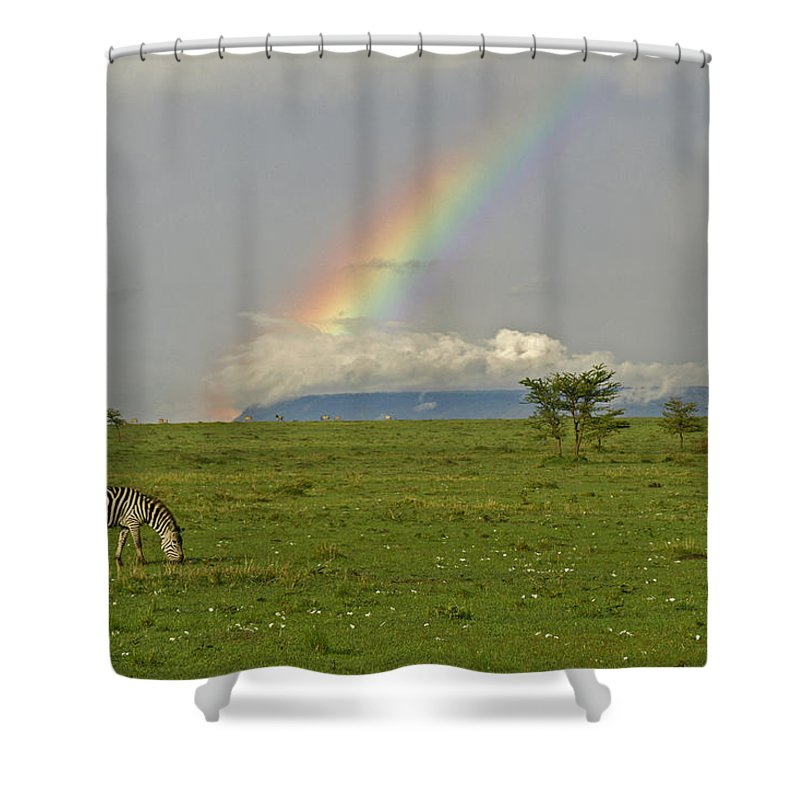 Africa Shower Curtain featuring the photograph Rainbow Over The Masai Mara by Michele Burgess