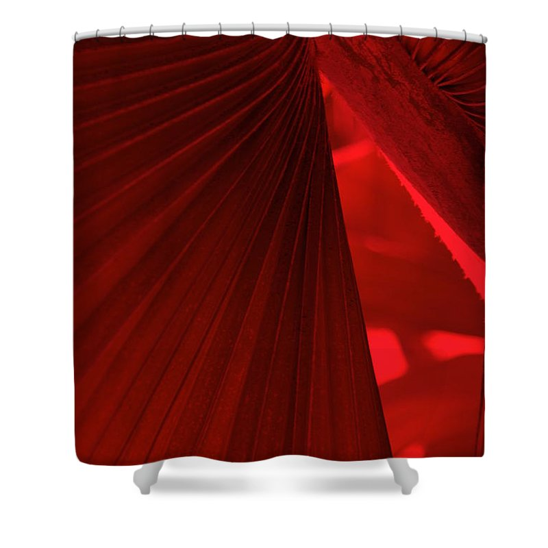 Palm Trees Shower Curtain featuring the photograph Red As Blood by Susanne Van Hulst