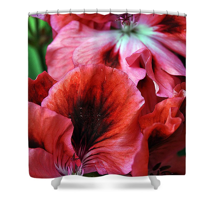 Clay Shower Curtain featuring the photograph Red Floral by Clayton Bruster