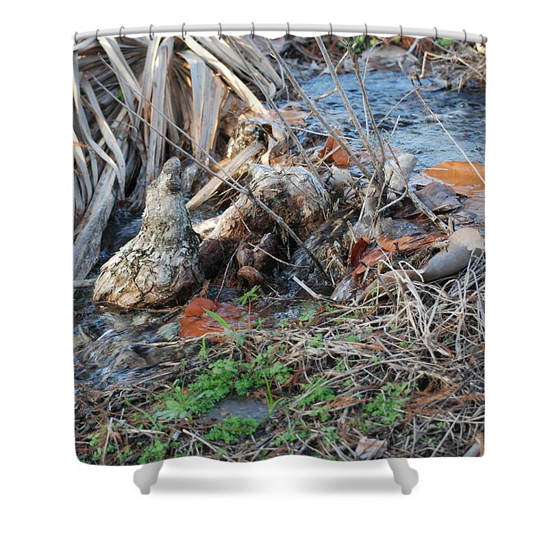 River Shower Curtain featuring the photograph Running Water by Rob Hans