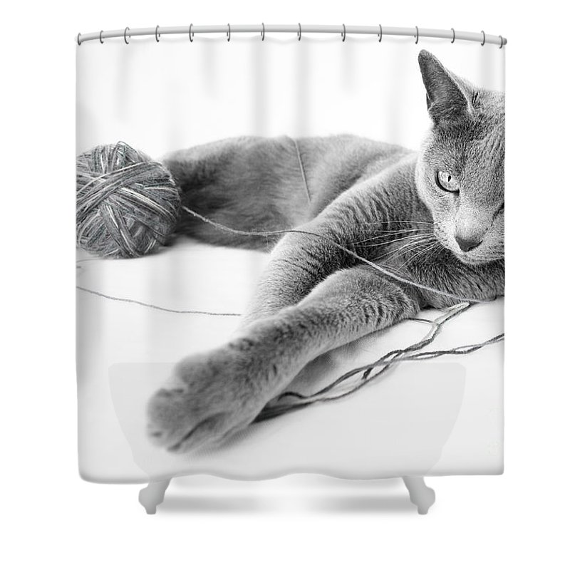 Household Shower Curtains