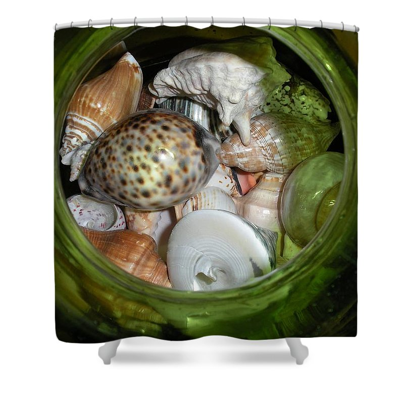 Sealife Shower Curtain featuring the photograph Shells Under Glass by Maria Bonnier-Perez