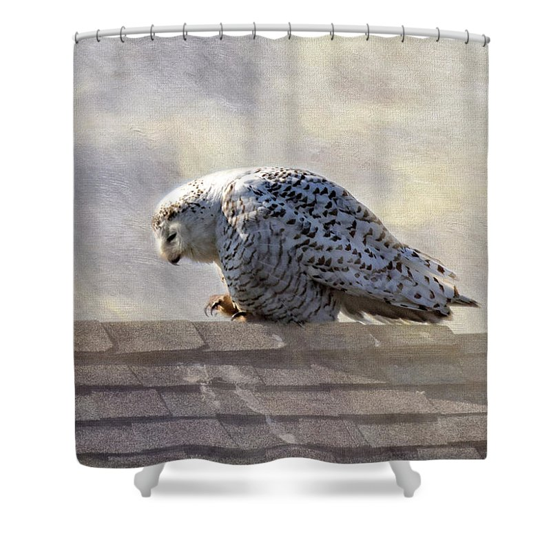 Birds Shower Curtain featuring the photograph Snowy Owl by Betty Pauwels
