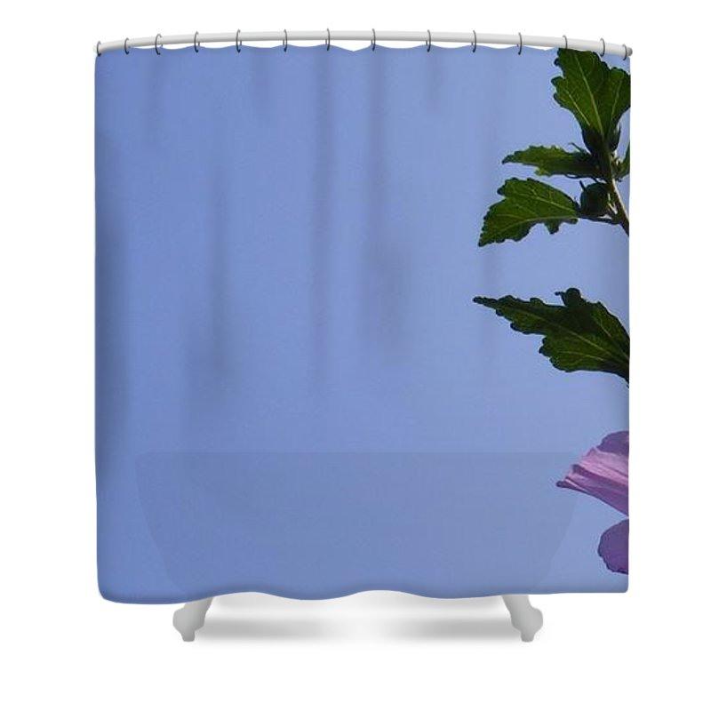 Stranded Shower Curtain featuring the photograph Stranded by Ed Smith