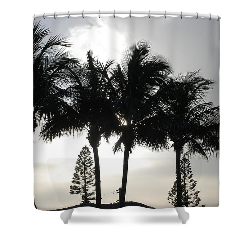 Sky Shower Curtain featuring the photograph Sunset Thru The Trees by Rob Hans