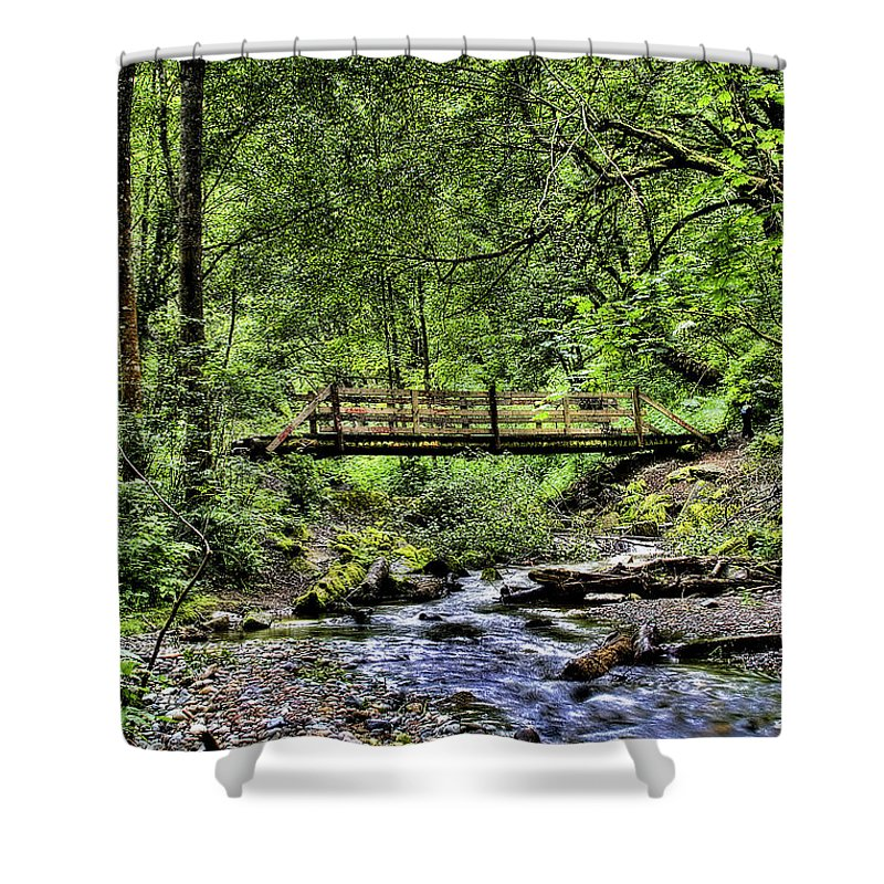 Swan Creek Shower Curtain featuring the photograph Swan Creek Park by David Patterson