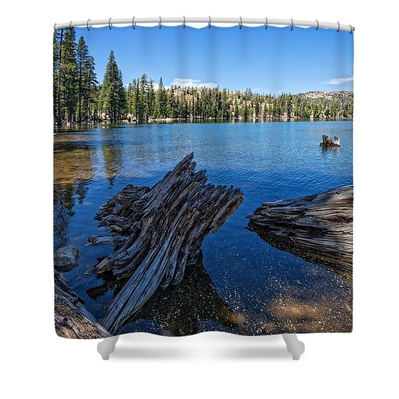 Tamarack Shower Curtain featuring the photograph Tamarack Lake by Dianne Phelps