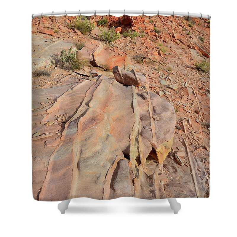 Valley Of Fire State Park Shower Curtain featuring the photograph The Color Of Valley Of Fire by Ray Mathis