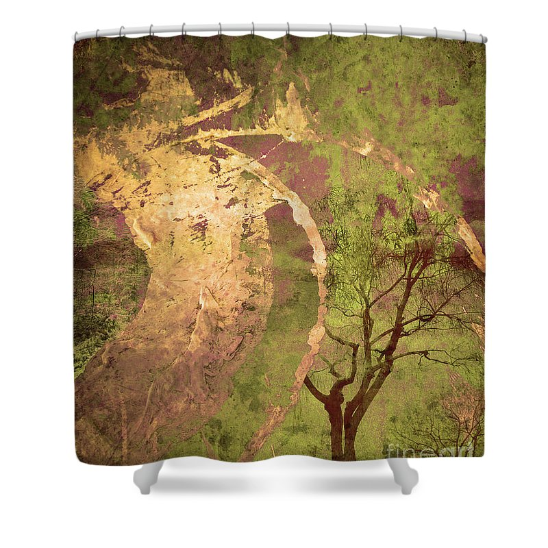 Tree Shower Curtain featuring the photograph The Fallen by Tara Turner
