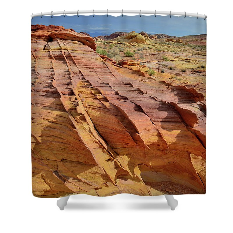 Valley Of Fire State Park Shower Curtain featuring the photograph The Many Colors Of Valley Of Fire by Ray Mathis