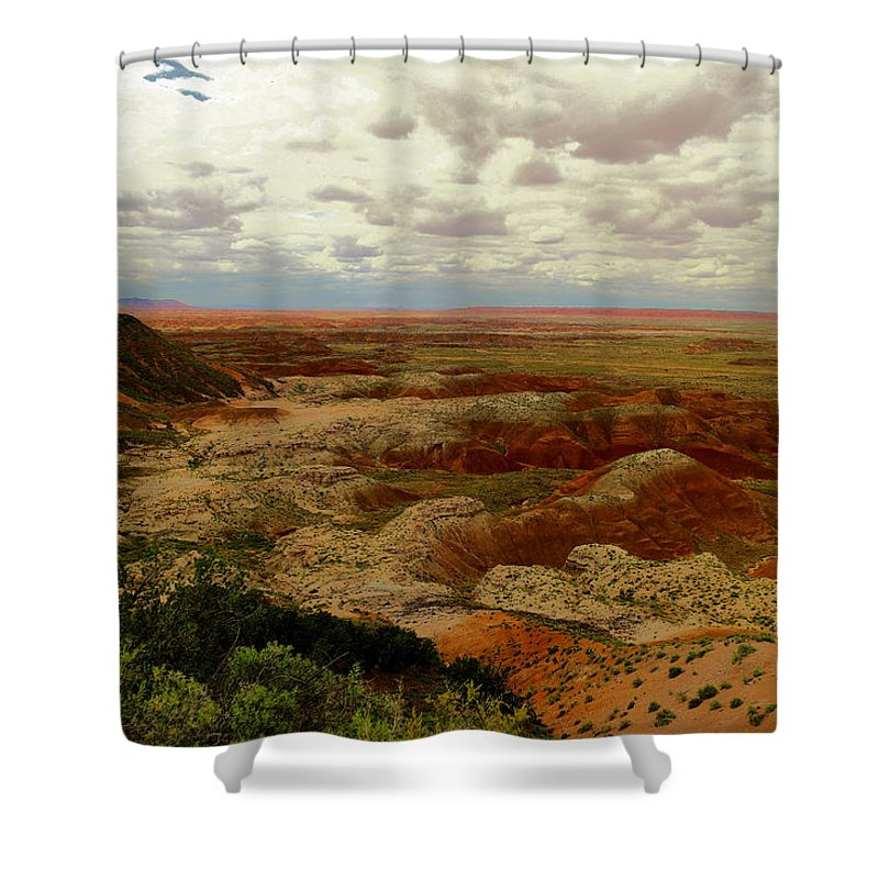 Scenic Shower Curtain featuring the photograph Viewpoint In The Painted Desert by Jeff Swan