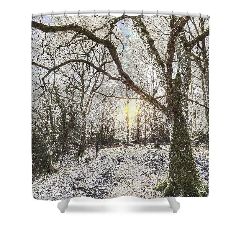 Forest Shower Curtain featuring the photograph The Snow Forest Art by David Pyatt