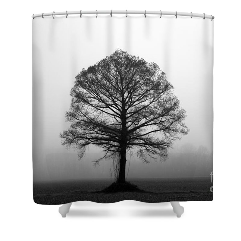Tree Shower Curtain featuring the photograph The Tree by Amanda Barcon