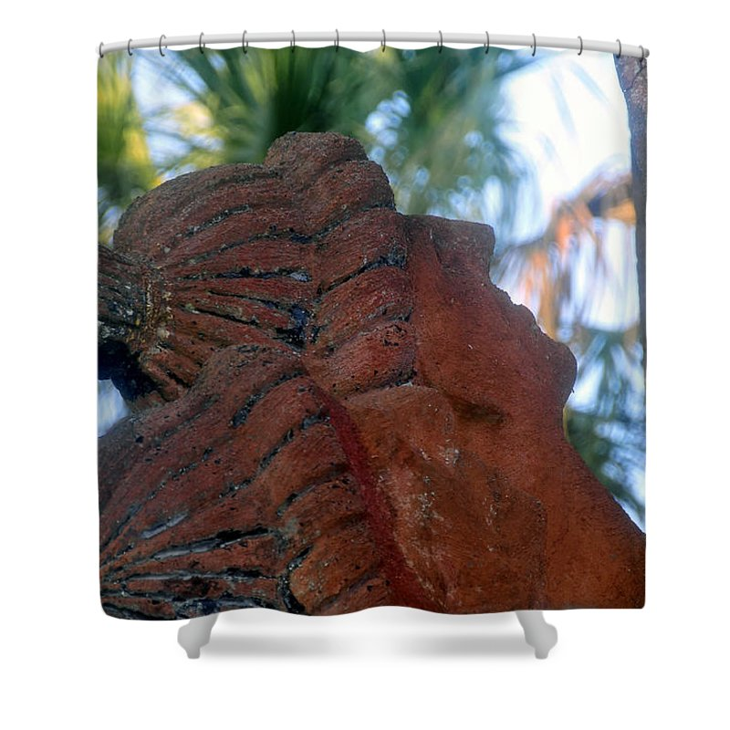 Timucuans Shower Curtain featuring the photograph Timucuans by David Lee Thompson
