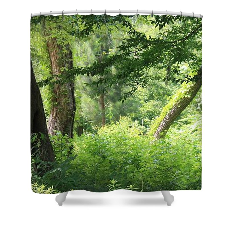 Roena King Shower Curtain featuring the photograph Tranquility by Roena King