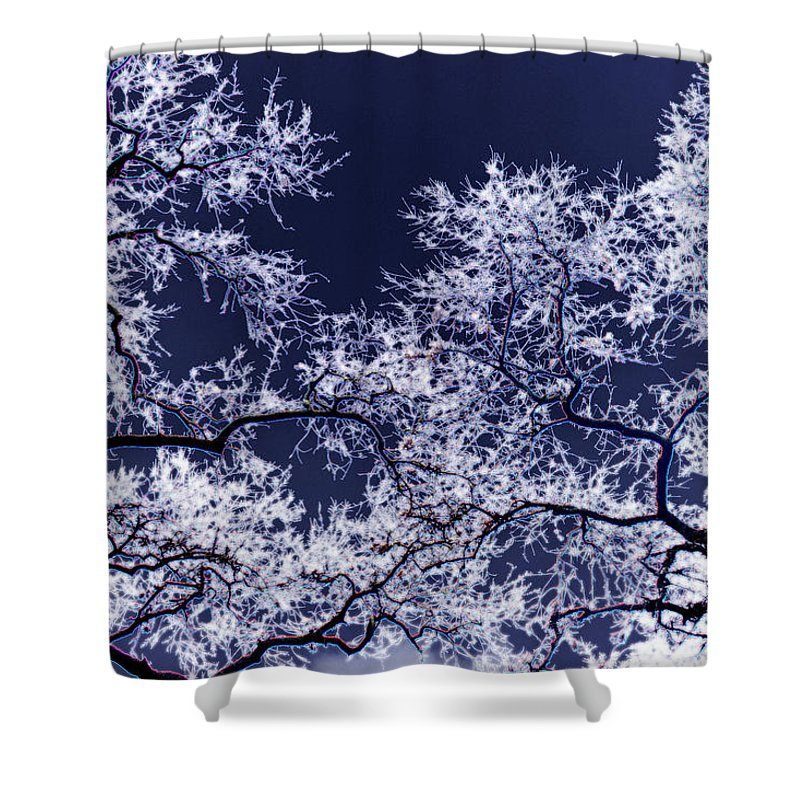 Tree Shower Curtain featuring the photograph Tree Fantasy 17 by Lee Santa