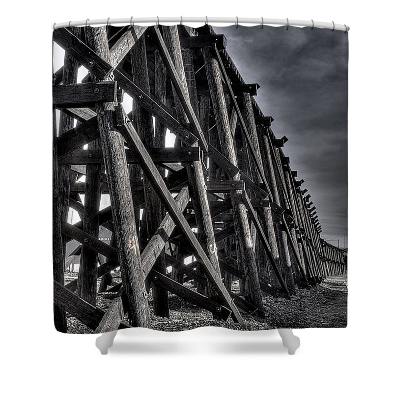 Tressel From The West Shower Curtain featuring the photograph Tressel From The West by David Patterson