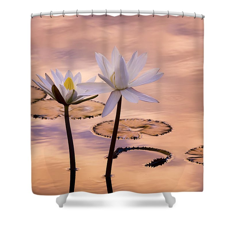 Bloom Shower Curtain featuring the photograph Tropical Lily by Joe Mamer
