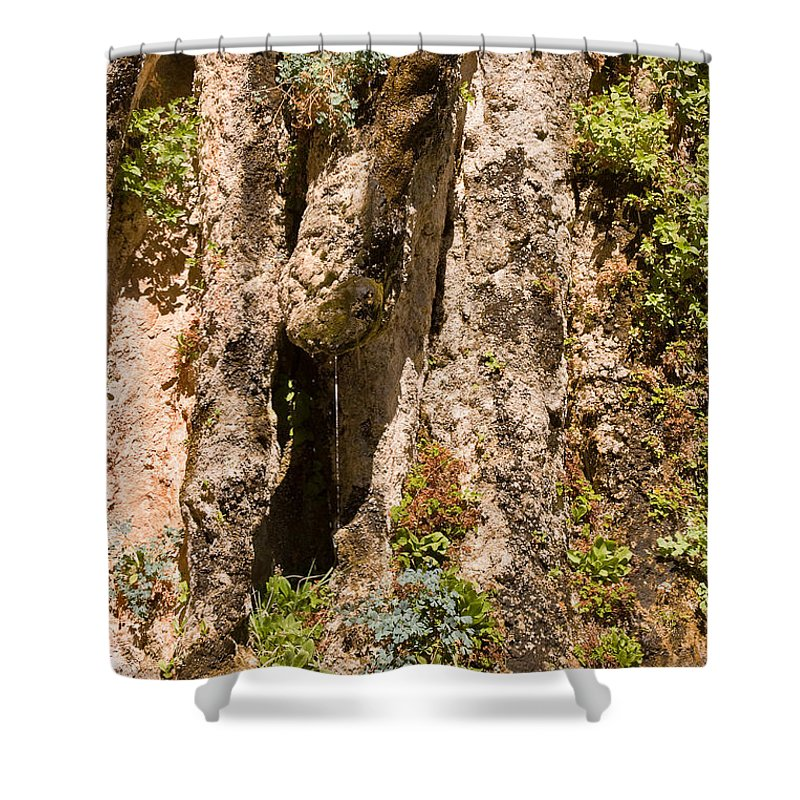 Nature Shower Curtain featuring the photograph Weeping Rock In Zion National Park by Louise Heusinkveld