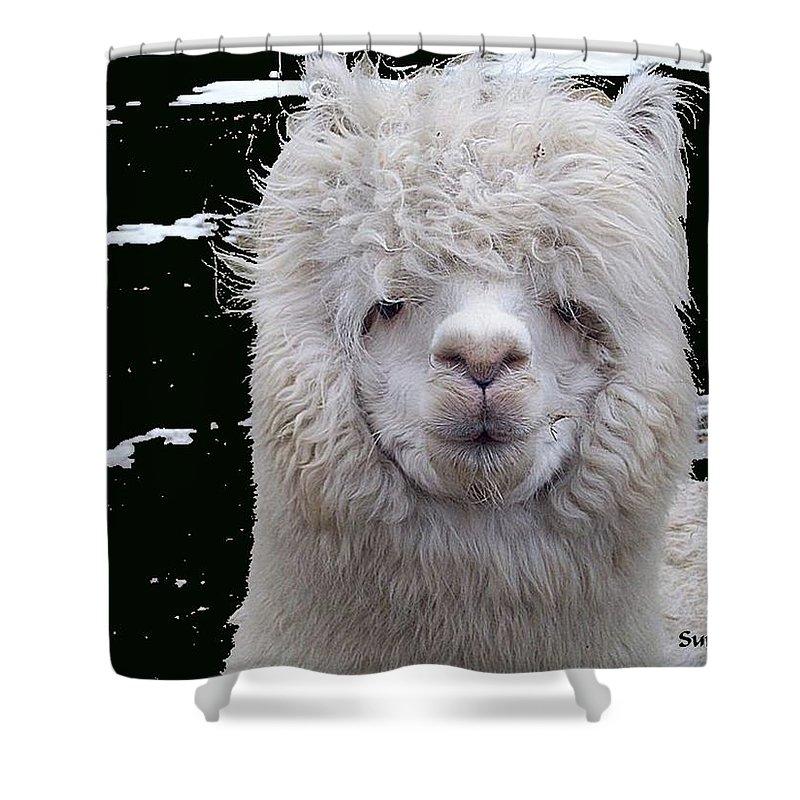 Alpaca Shower Curtain featuring the digital art Wild Life- by Robert Orinski