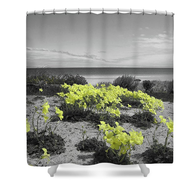 Flowers Shower Curtain featuring the photograph Yellow by Douglas Barnard