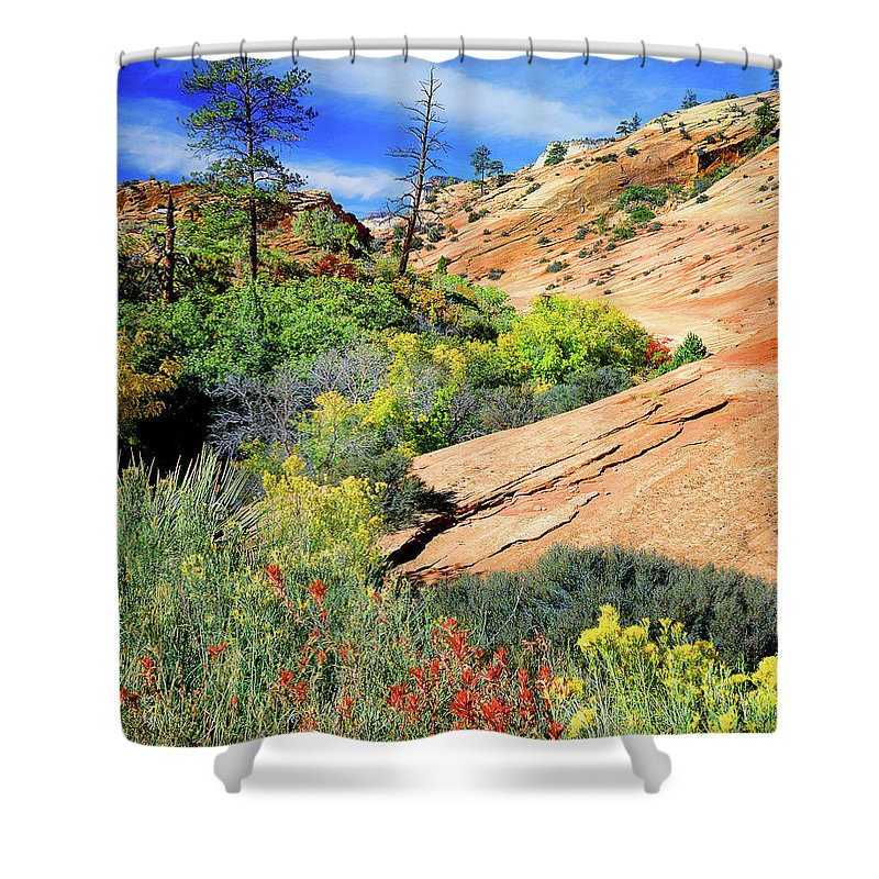 Zion National Park Shower Curtain featuring the photograph Zion Slickrock by Frank Houck
