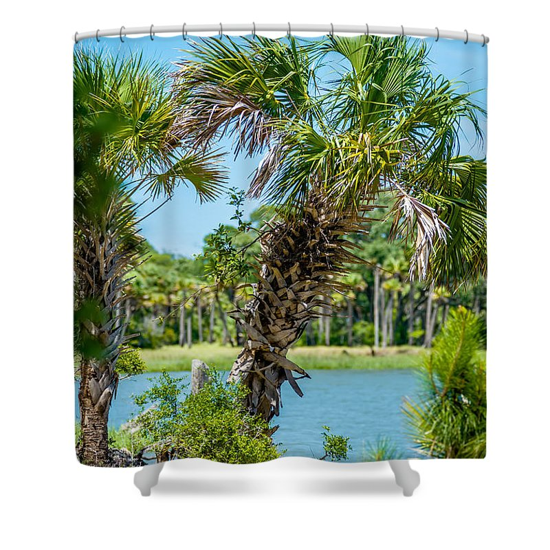 Beaufort Shower Curtain featuring the photograph Palmetto Forest On Hunting Island Beach by Alex Grichenko
