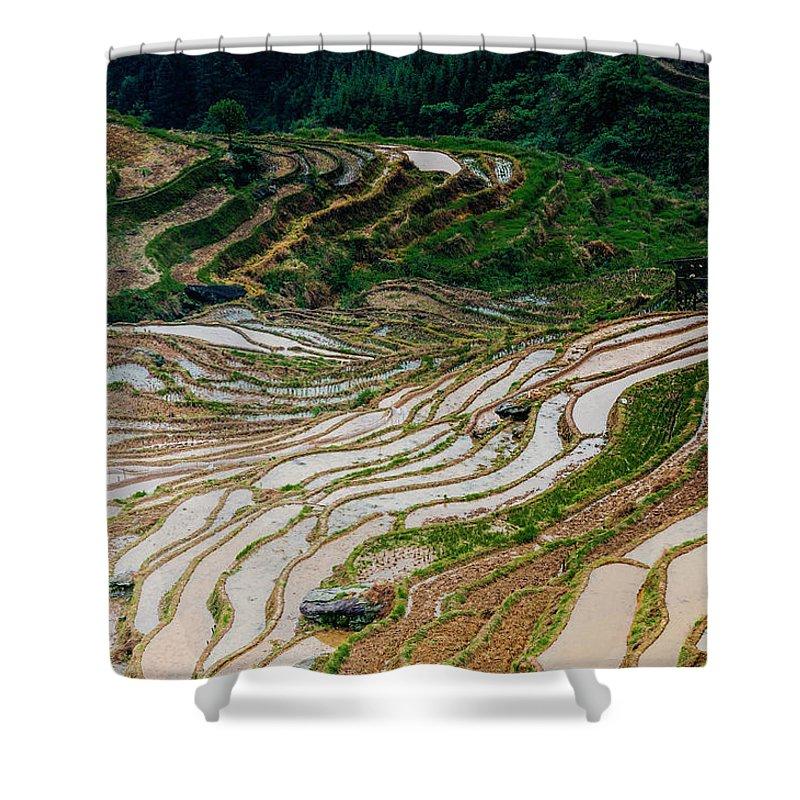Terrace Shower Curtain featuring the photograph Longji Terraced Fields Scenery by Carl Ning