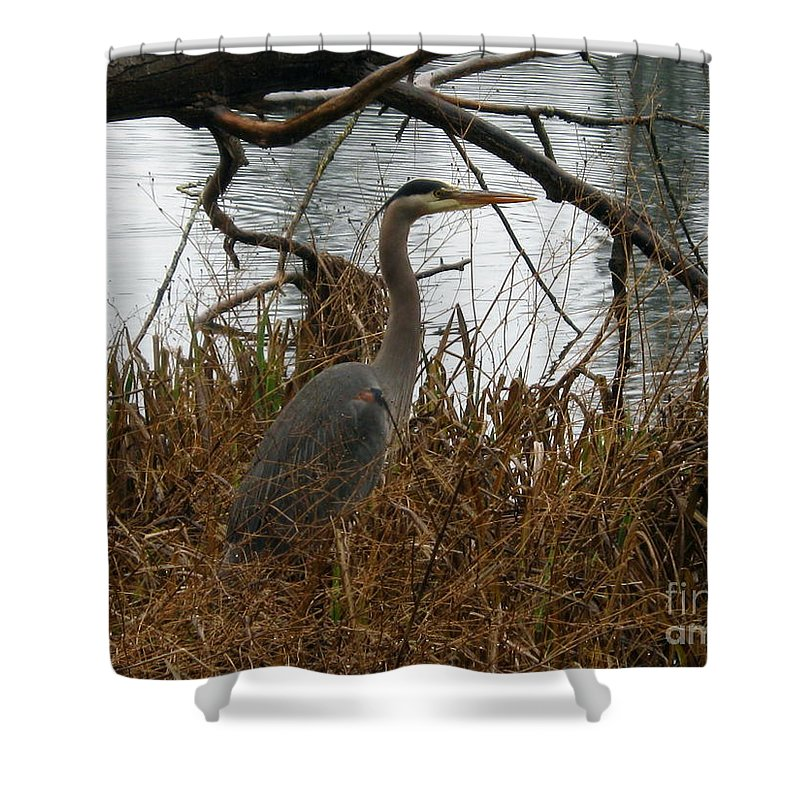 Wildlife Shower Curtain featuring the photograph Untitled by John Huntsman