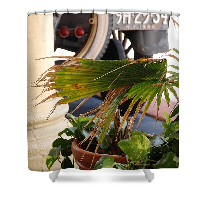 Ford Shower Curtain featuring the photograph 1926 Model T And Plants by Rob Hans