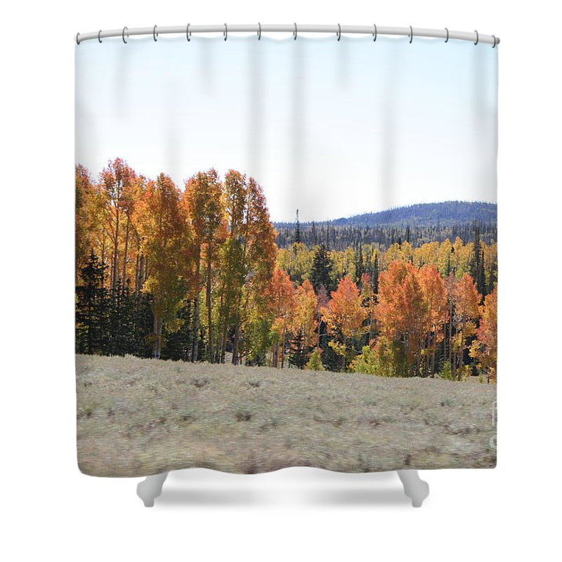 Aspen Tree Shower Curtain featuring the photograph Colorful Aspen Trees by Christiane Schulze Art And Photography