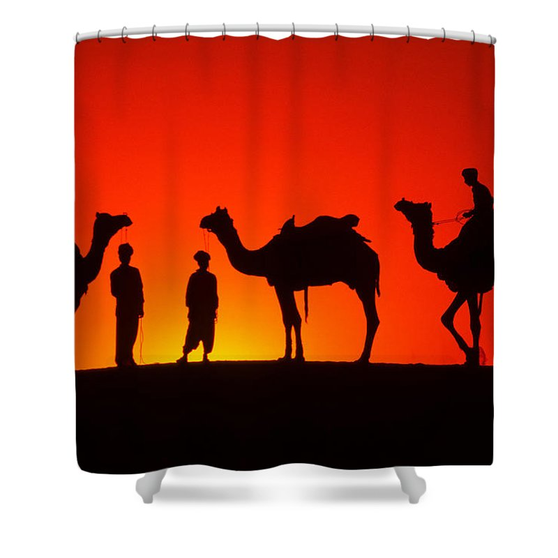 India Shower Curtain featuring the photograph Camels At Sunset by Michele Burgess