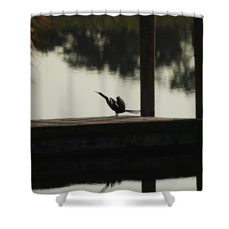 Reflections Shower Curtain featuring the photograph Dock Bird by Rob Hans