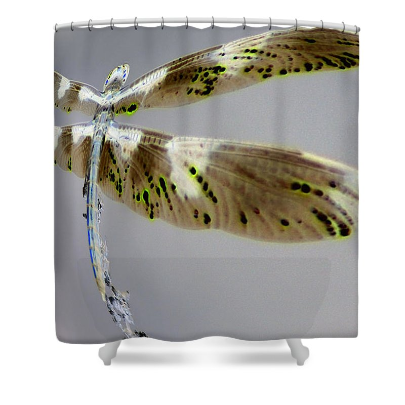 Abstract Shower Curtain featuring the photograph Dragonfly by Jeff Swan