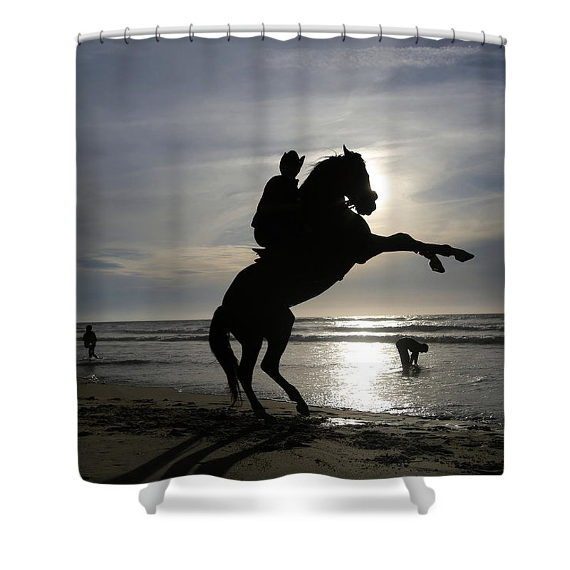 Horseback Riding At Gaza Beach Shower Curtain featuring the photograph Horseback Riding by Mahmoud Issa