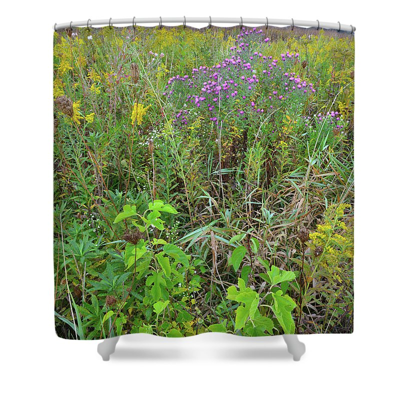 Glacial Park Shower Curtain featuring the photograph Glacial Park Native Prairie by Ray Mathis