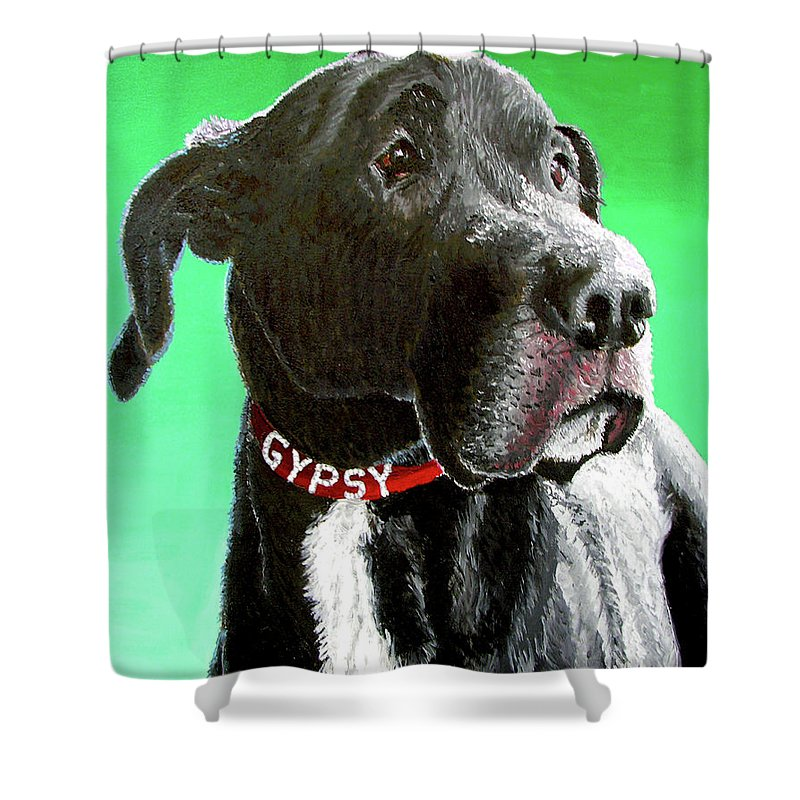 Dog Portrait Shower Curtain featuring the painting Gypsy by Stan Hamilton