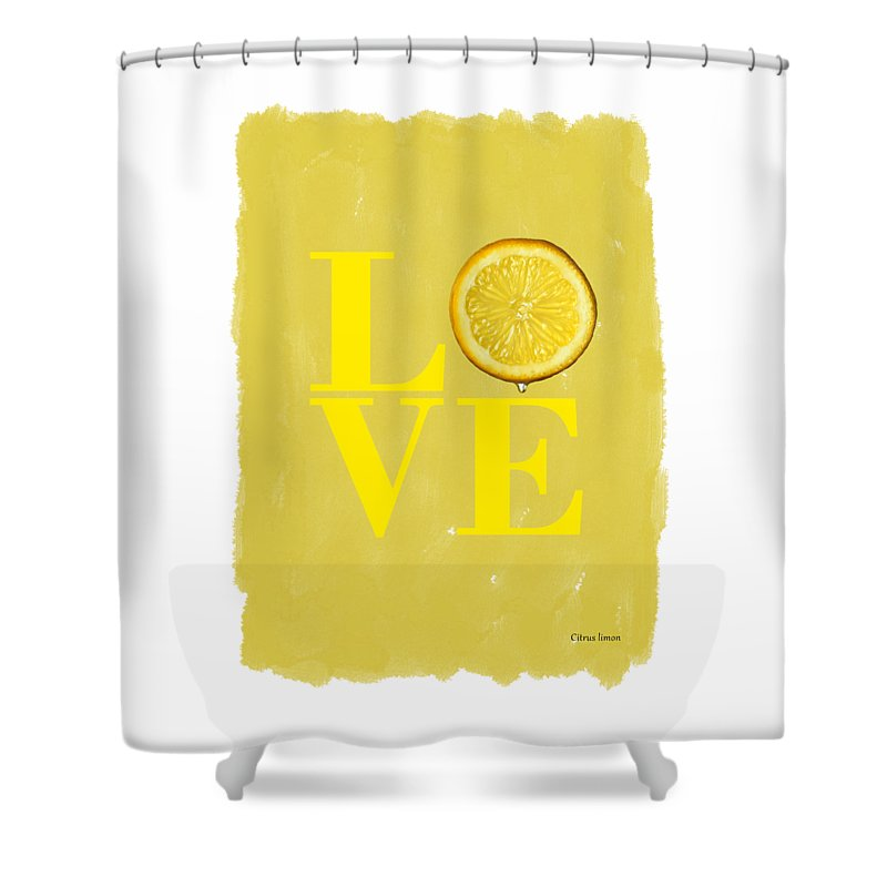Lemon Kitchen Decor At Target: Lemon Shower Curtains