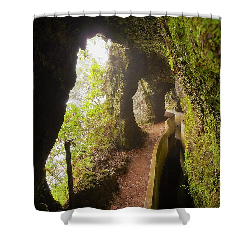 Portugal Shower Curtain featuring the photograph Levada Da Serra Do Faial, Madeira by Karol Kozlowski